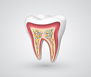 Endodontics-root-canal-therapy home page